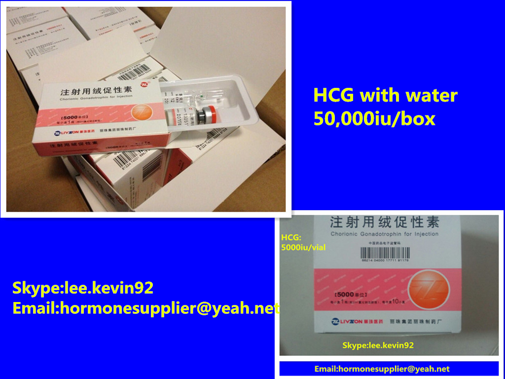 HCG powder 99% injection HCG 5000iu 2000iu High purity Human Chorionic Gonadotropin 5000iu