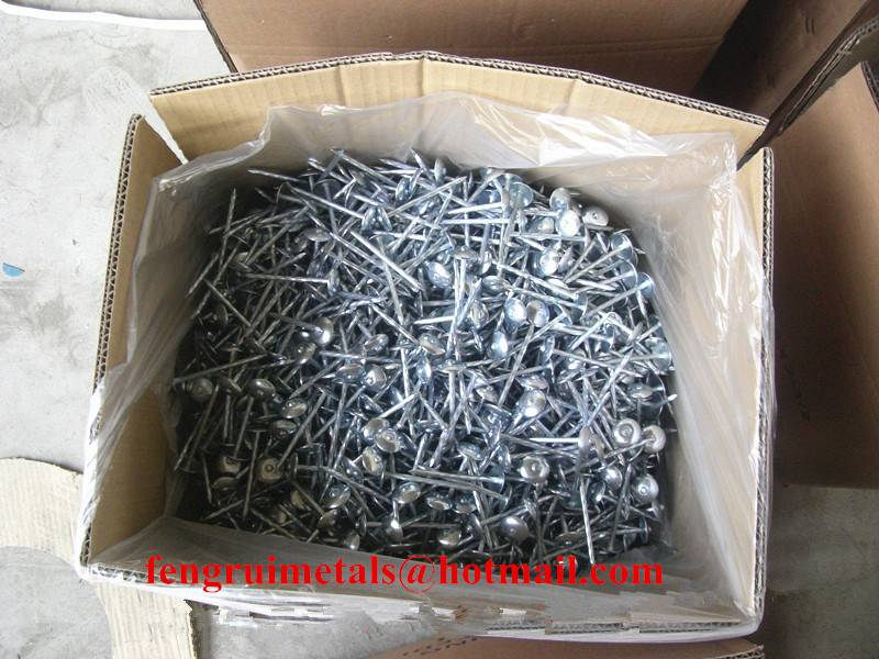 25kg per carton galvanized umbrella roofing nails