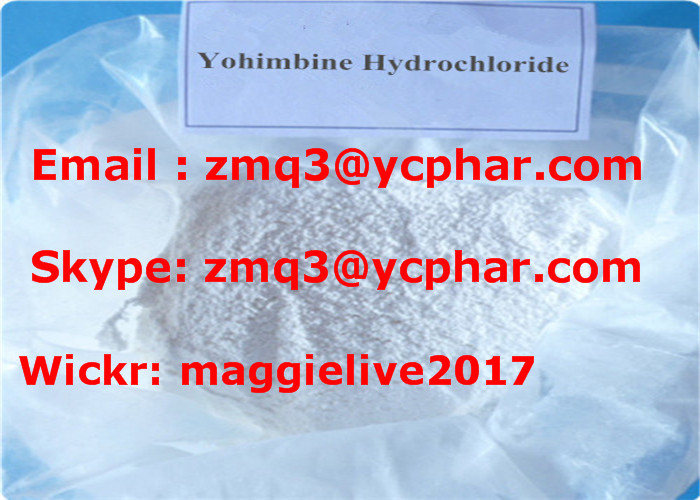 CAS 65-19-0 Sex Enhancer Drugs Hormone Powder Yohimbine Hydrochloride / Yohimbine HCl