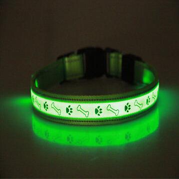 Pet Dog LED Leash, Safety Glow Leash