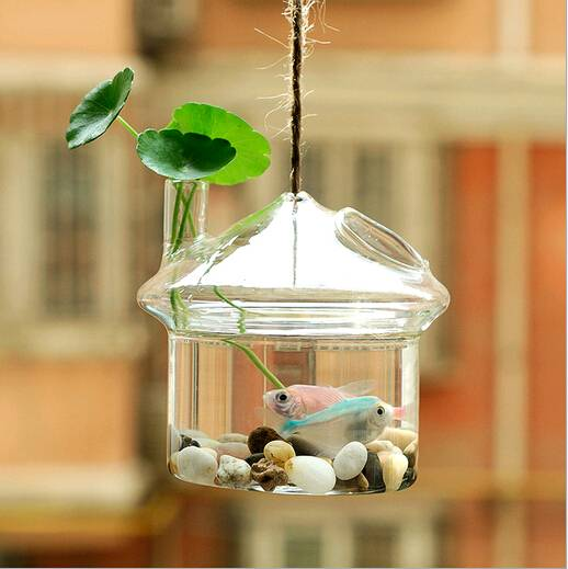 Christmas gift Christmas decorations hanging glass terrarium hydroponic plant vase