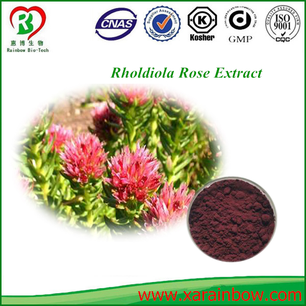 Factory Bulk Supply Rhodiola Rosea Extract