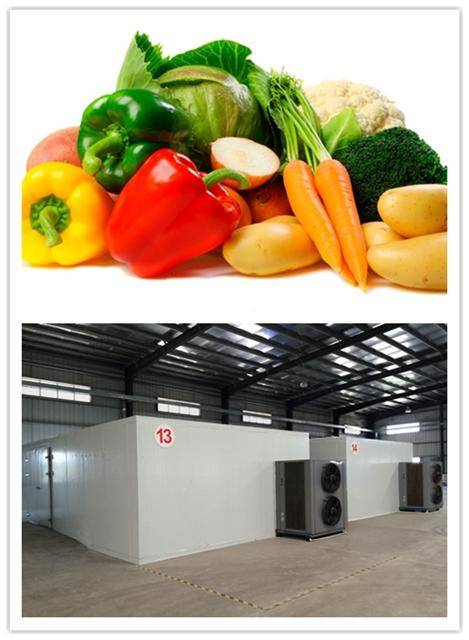 high temperature vegetable dryer,air source heat pump technology,Intelligent temperature and humidit