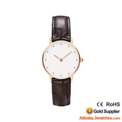wholesales-daniel-wellington-watches-3w-dw22
