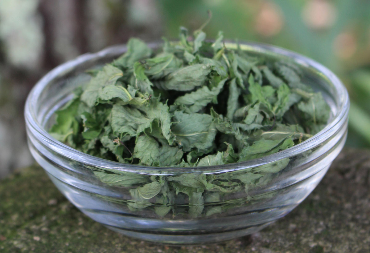 Organic Dried Peppermint Leaves