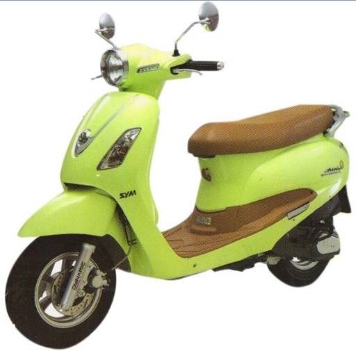 electric scooter YT-EB-011 XIAOGUIWANG