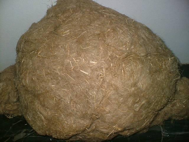 Arouss Flax Short Fiber