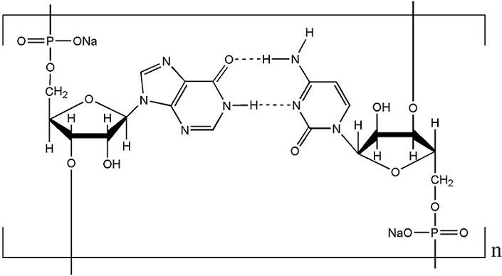 Polyinosinic polytidylic acid sodium salt(PolyI:C)