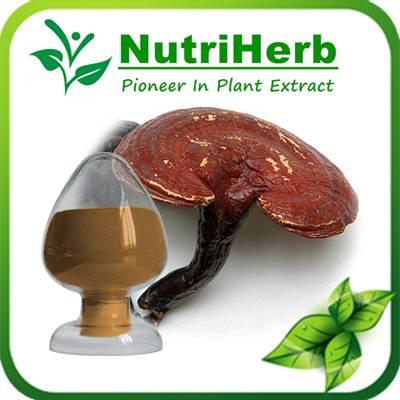 Natural Reishi Mushroom Extract