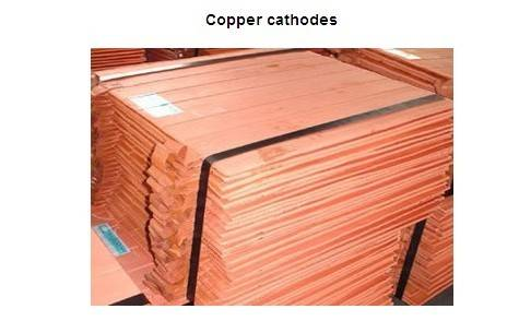 Copper Cathode