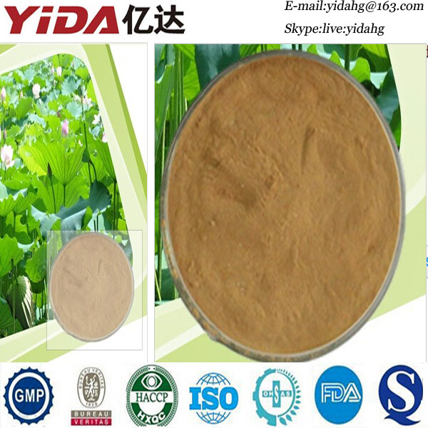 Manufacturer sales pure lotus leaf extract
