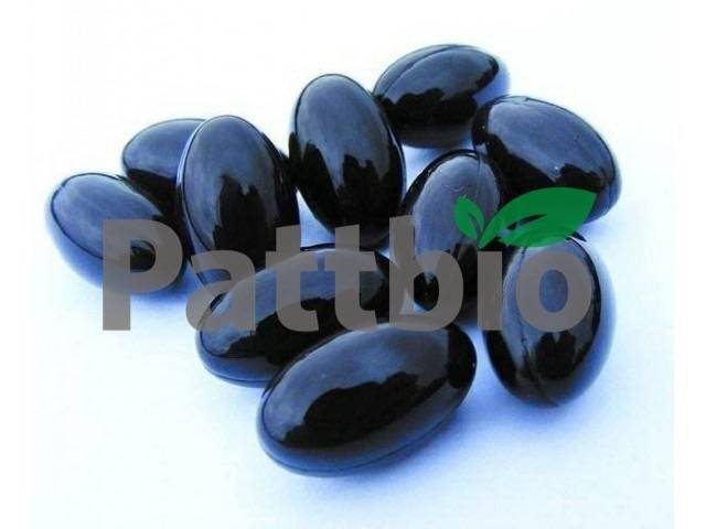 Blueberry Softgel 500mg Contract manufacture private label