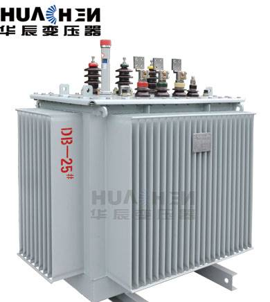S11 High Voltage Oil filled Electrical Power Distribution Transformer 1000kVA