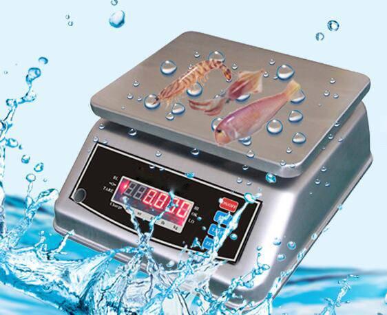 30kg Stainless steel Waterproof scale