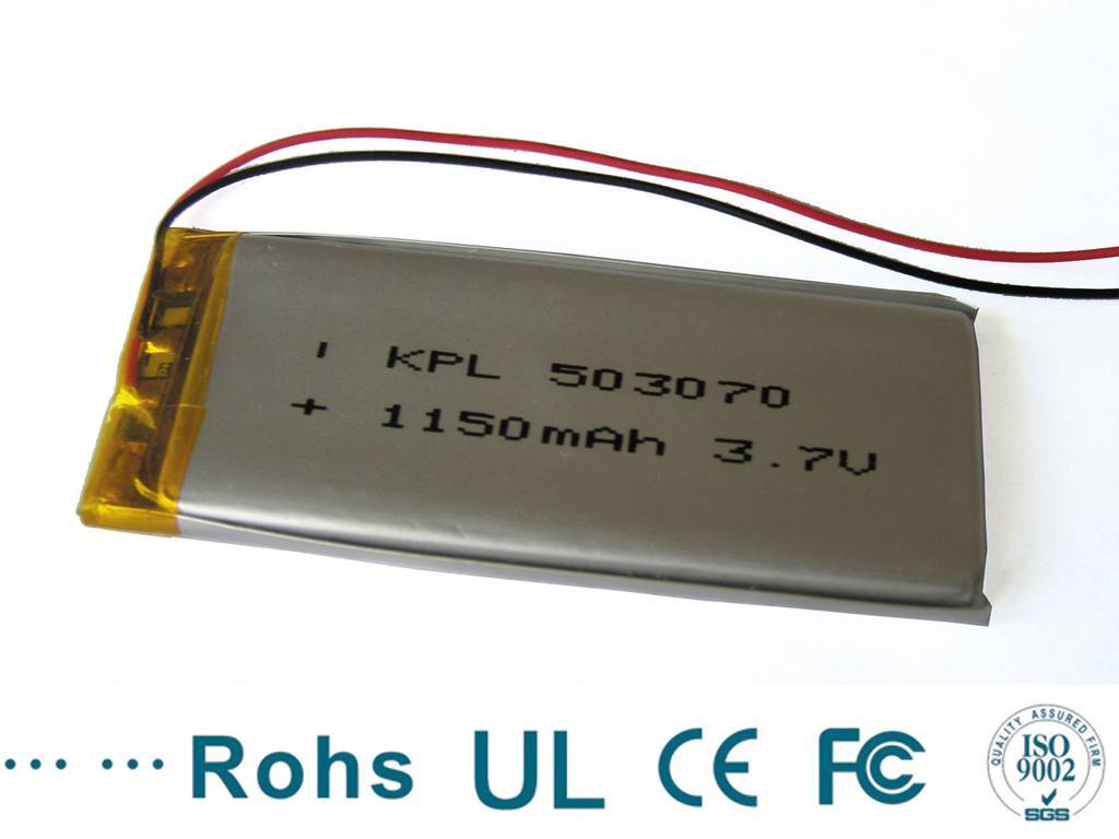 Rechargeable GPS Battery