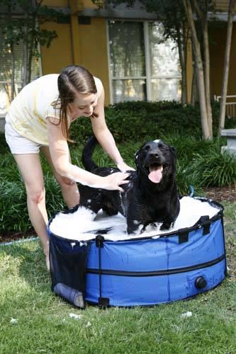 pet  portable  bath