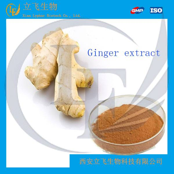 100% Natural and Organic Ginger Extract
