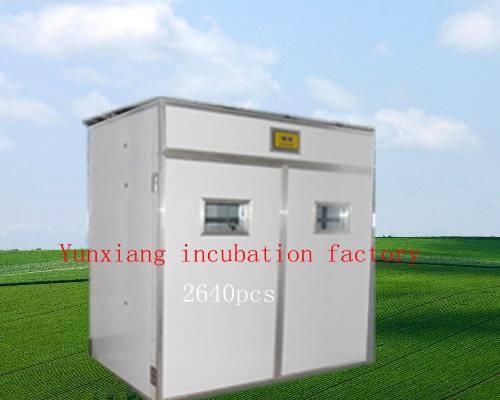 2640pcs quail egg incubator for sale