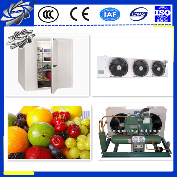 large scale blast freezer chiller room and cold storage project
