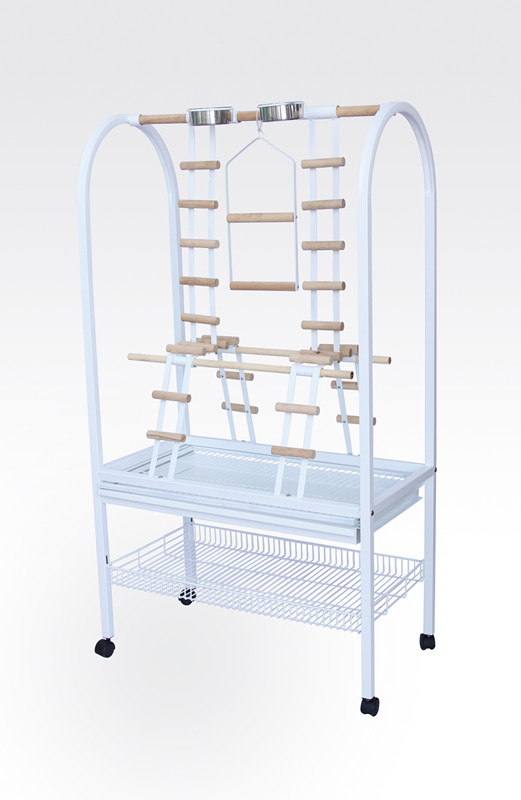 Parrot Cages with Ladders