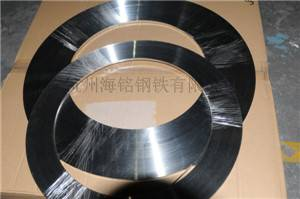 Hot sale 304 stainless steel strip