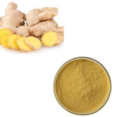Ginger Juice Powder
