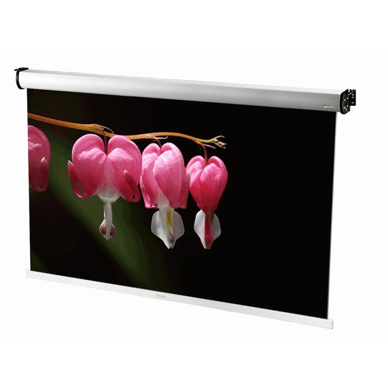 Rear (Dual Viewer) Auto. Roll Projection Screen