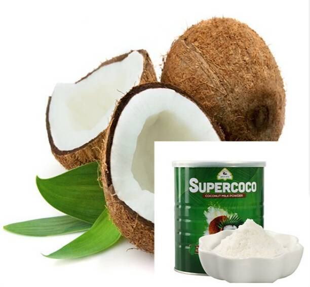 100% Pure Natural Coconut Extract Powder