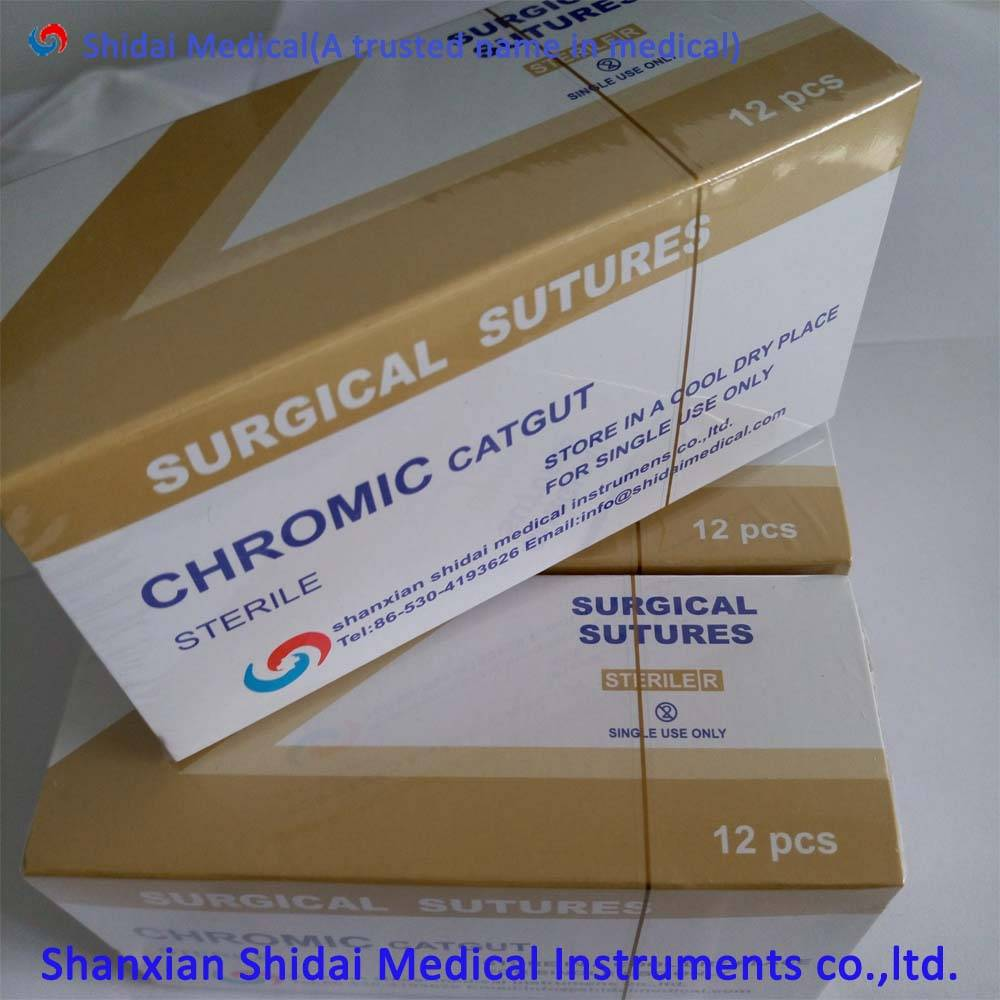 catgut suture with surgical needle