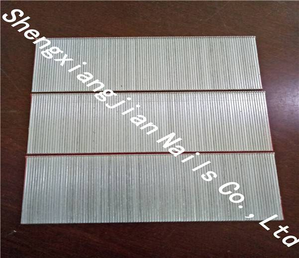 China Galvanized Industrial T Brad Finish Nails with High Quality and Low Price
