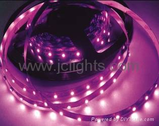 5050 12V/24V flexible led strip light