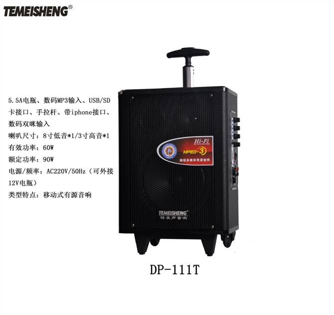 Professional outdoor movable speaker.