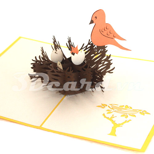 Bird Nest-Kirigami-Pop up-3D-Handmade-Laser cut-Paper cutting-Birthday card