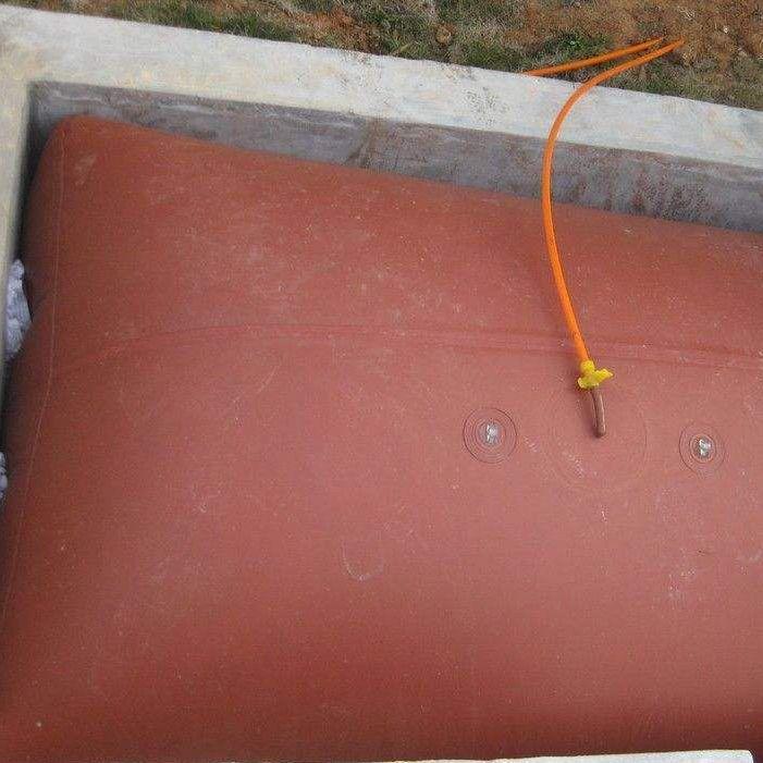 China professional design PVC biogas storage bag