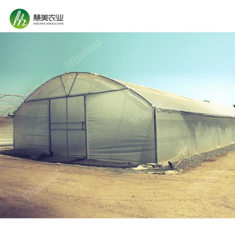 2018 New design vegetable fruits flowers large galvanized frame greenhouse tunnel