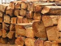 buyers of kosso wood wanted urgently