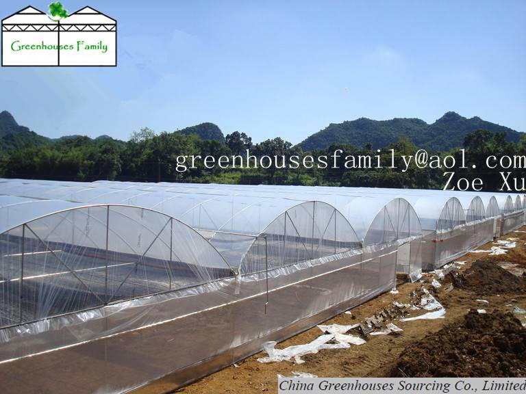 Commercial Agricultural Greenhouses