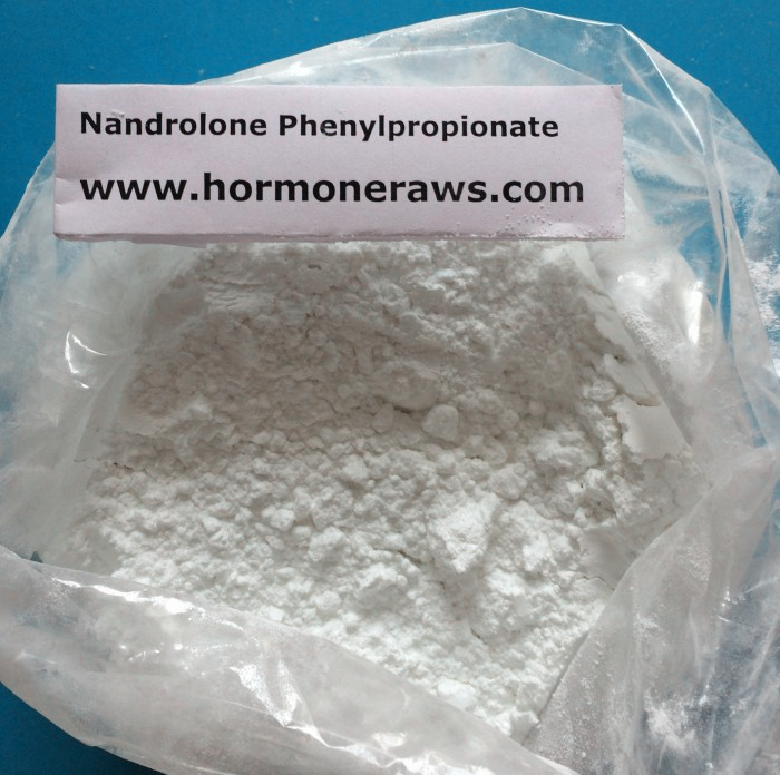 Buy Nandrolone Phenylpropionate Powder