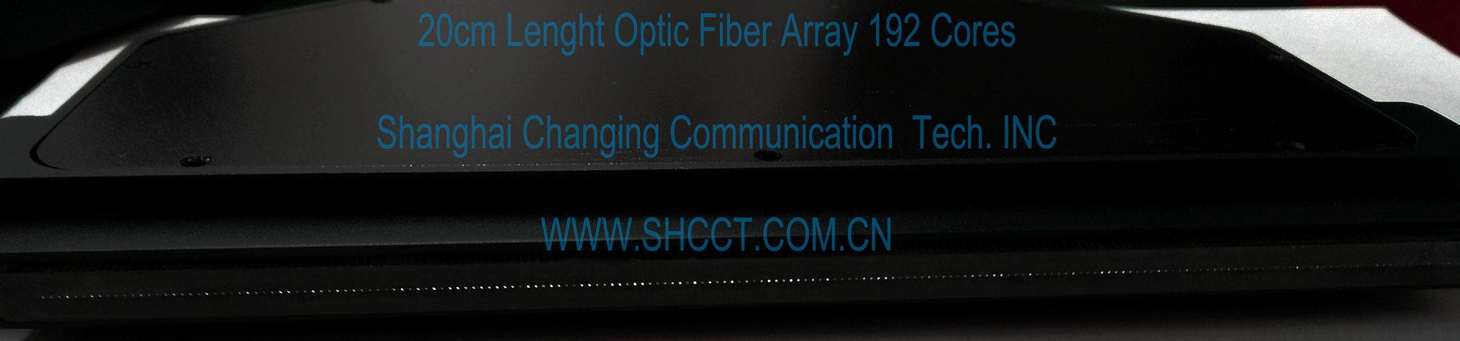 long length large core optic fiber array