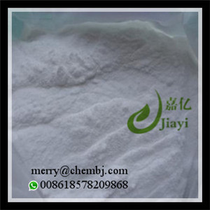 Sport Nutrition Powder Creatine with Large Stock