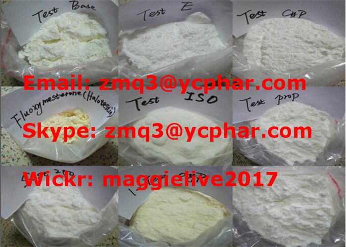 99.5% Purity Testosterones Base Powder Test Base CAS No.: 58-22-0
