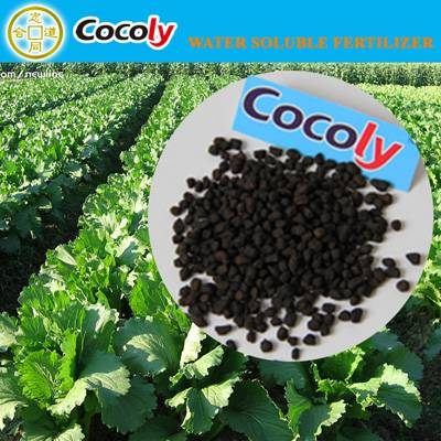 cocoly fertilizer used vegetables coumpound fertilizer