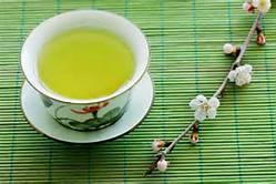 Green Tea Chunmee 41022A 9371A for Morocco Market & Algeria Market