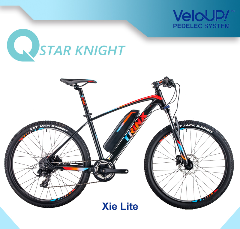 MTB Special Color Electric Bicycle with 250W Motor Mountain Ebike