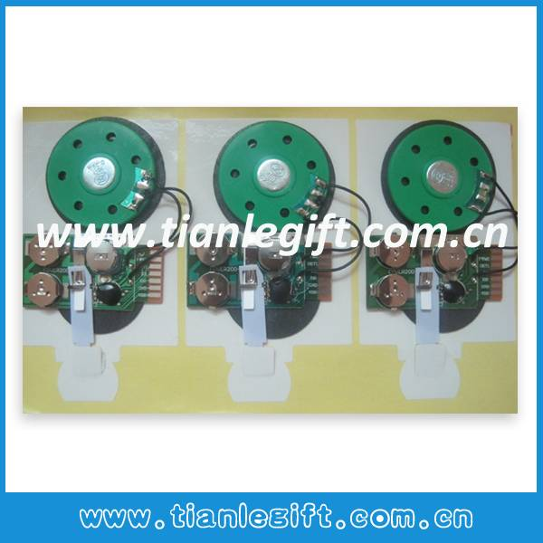 Sound Chip For Greeting Card
