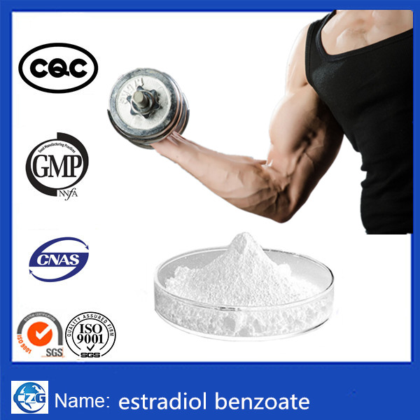 High quality hot sale USP GMP estradiol benzoate