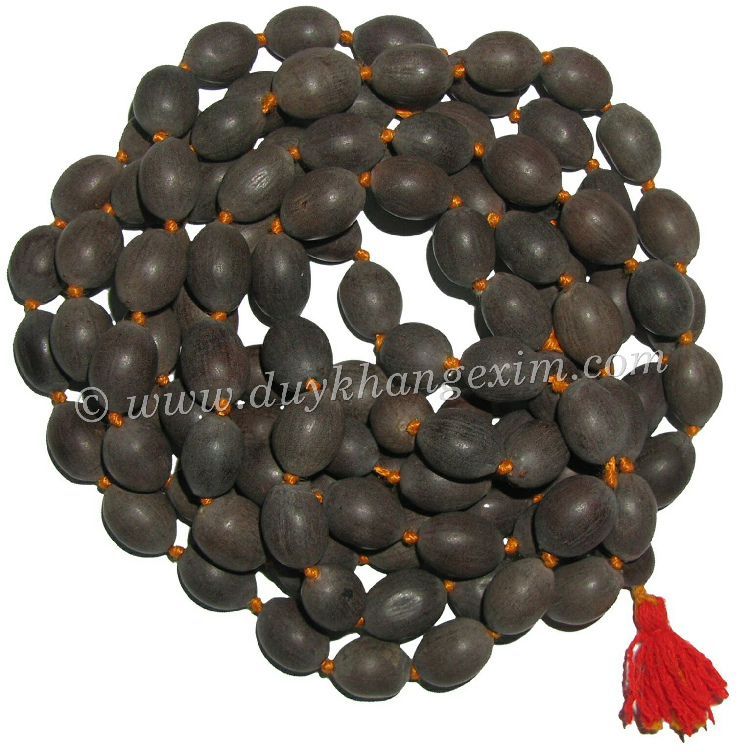 OFFER BLACK LOTUS SEEDS FROM THE BIGGEST MANUFACTURE IN VIETNAM