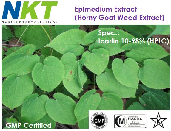 Epimedium Extract (Horny Goat Weed Extract) (GMP Certified)