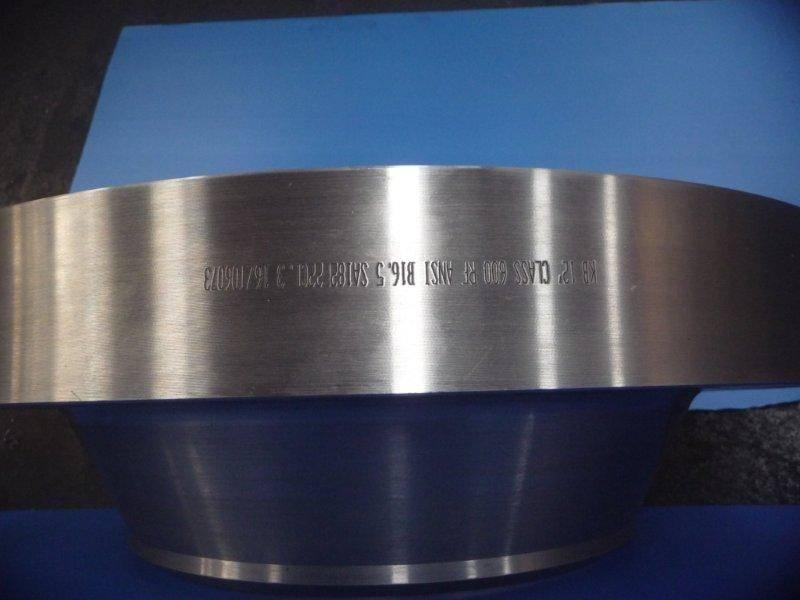 ANSI B16.5 A182 F22 Steel Flanges