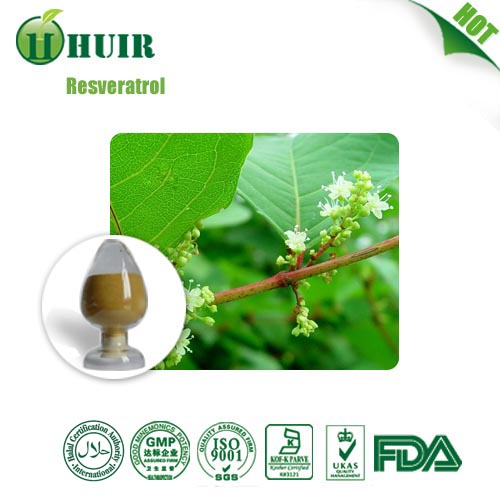 Huir Biological-Tech co.Ltd Professional manufacture Resveratrol
